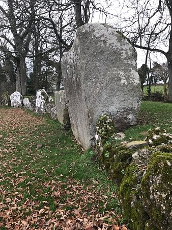 Bruff, Irland: photo8.jpg
