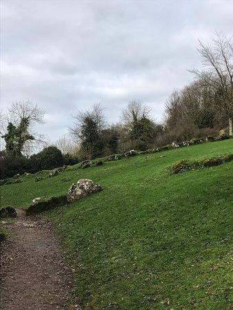 County Limerick, Irlanda: photo5.jpg