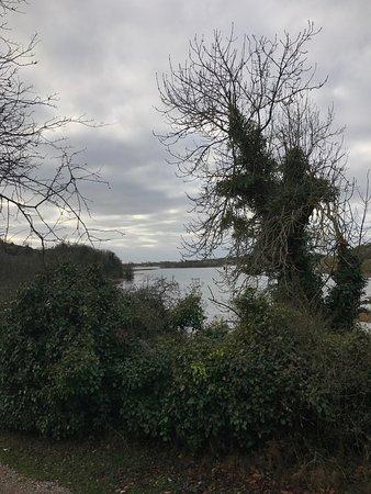 County Limerick, Irlanda: photo6.jpg