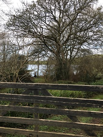 County Limerick, Irlanda: photo8.jpg