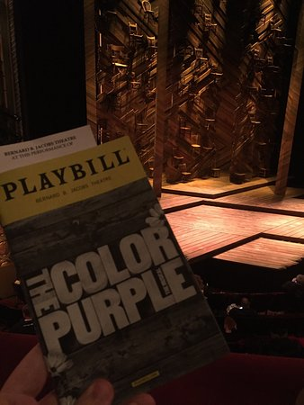 Beautiful Colors Close to Purple