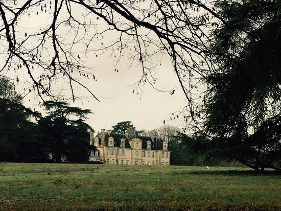 Curzay-sur-Vonne, Francia: Chateau de Curzay
