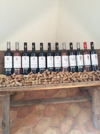 Provence Wine Tours : Great Display of Bottled Family Wine