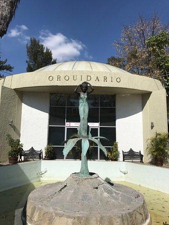 Orquidario de Morelia