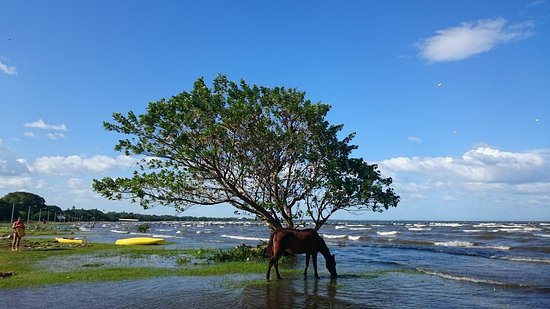 Гранада, Никарагуа: DSC_0938_large.jpg