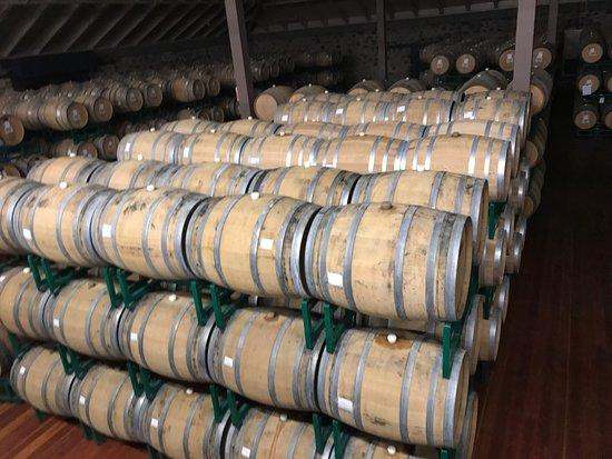 Healdsburg, CA: Winery tour