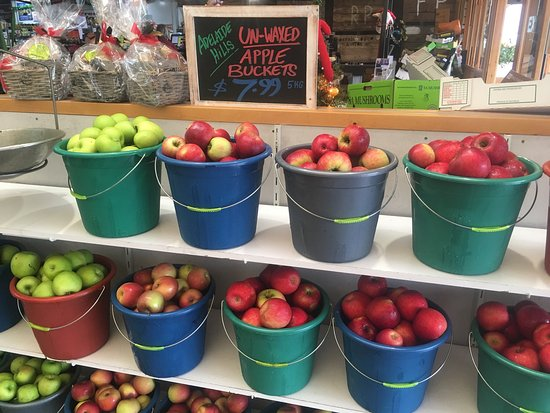 Hahndorf Fruit and Veg Market