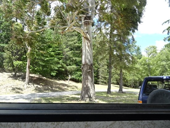 Lake Hawea, New Zealand: Camp site view.