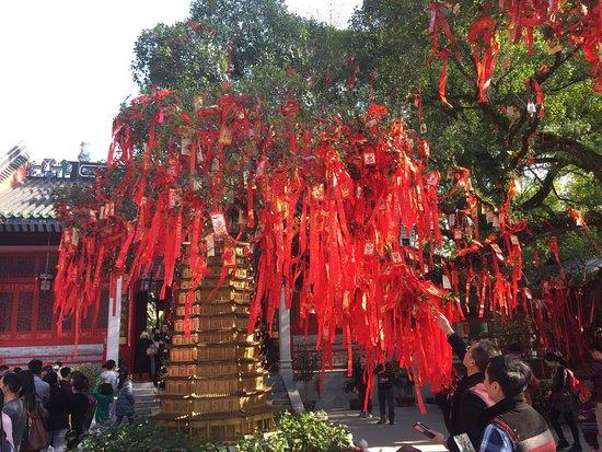 Xinxing County, China: photo2.jpg