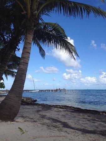 Barefoot Beach Belize : photo9.jpg