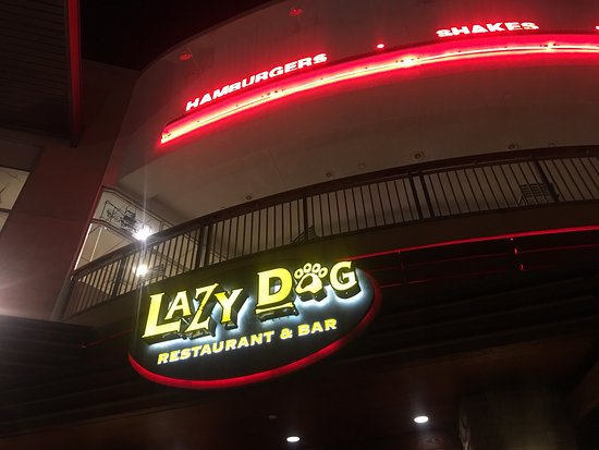 Lazy Dog Restaurant & Bar: Good food but the wait is too long every time we come here.