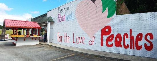 Townsend, GA: Building Exterior
