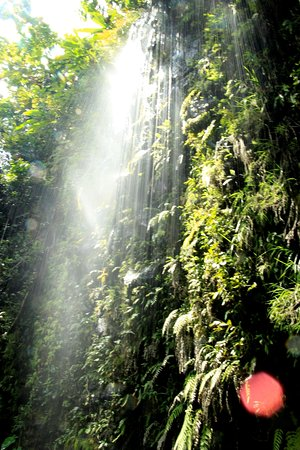 Maraa Grotto: The adjacent falls are also worth a visit