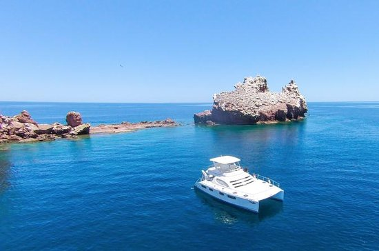 Sea of ​​Cortez Sightseeing Cruise og...