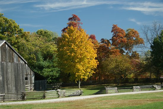 Chesterfield, MO: Trees in the Fall at Faust Park