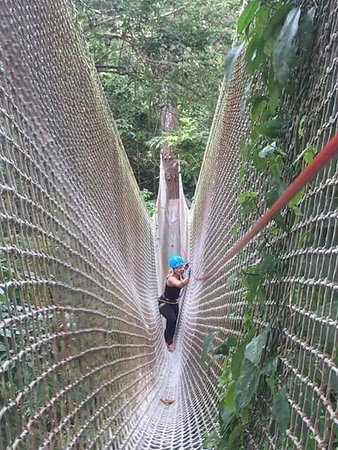Jungle Xtrem Adventures Park: photo1.jpg