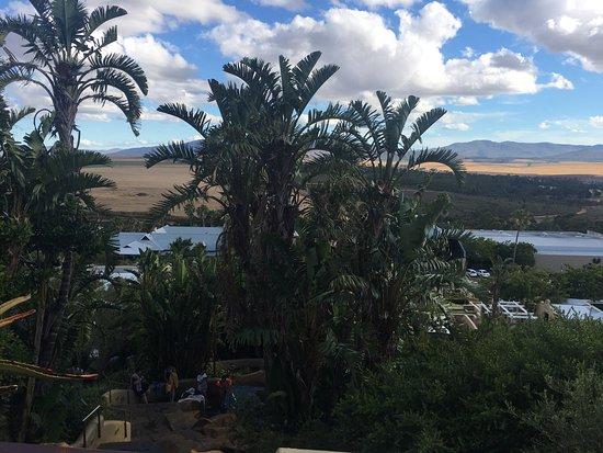 Caledon, Republika Południowej Afryki: photo1.jpg