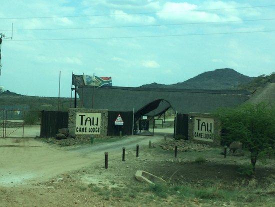 Tau Game Lodge: photo3.jpg