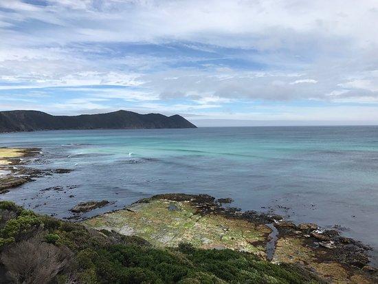 South Cape Bay Walk: photo8.jpg