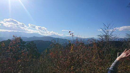 高尾山, DSC_0708_large.jpg