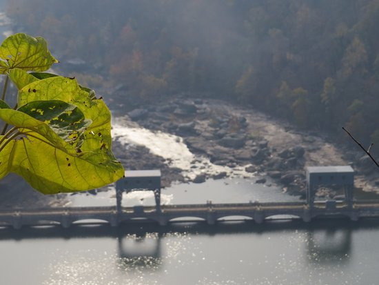 Ansted, Virginia Occidental: Artistic Shot with Fall Leaf & Dam