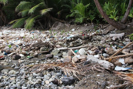 dolly beach rubbish