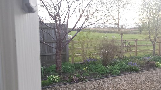 Brigstock, UK: View from our room