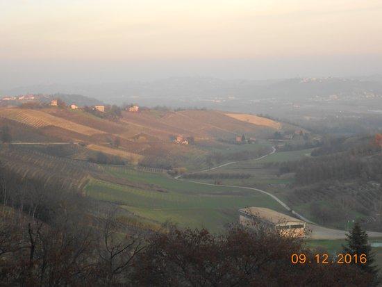 San Martino Alfieri, Ιταλία: Panorama vigneti dal parco