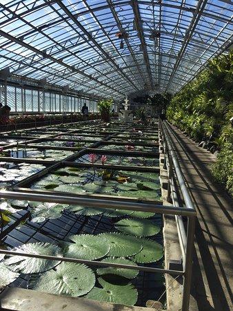 Atagawa Tropical & Alligator Garden : 良い場所