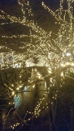 โตเกียว, ญี่ปุ่น: 宝来橋側から見た角度