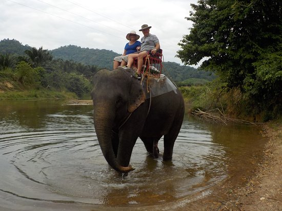 Khao Sok Smiley Bungalow : Elephant riding in Khoa Sok National Park