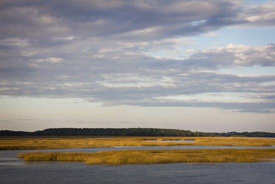 Hardeeville, SC: December cloudy day in Savannah Wildlife Refuge