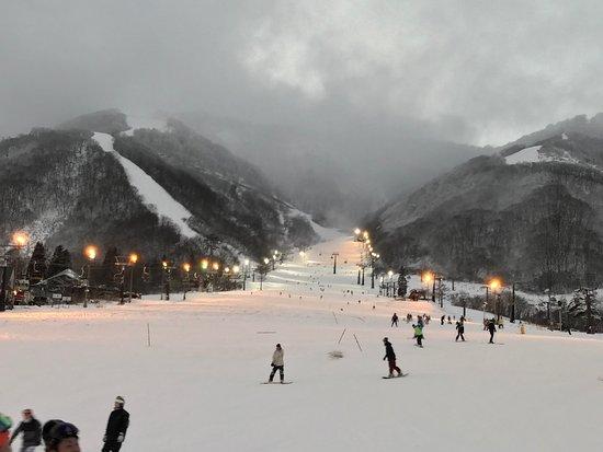 白马高卢滑雪场/高山花园