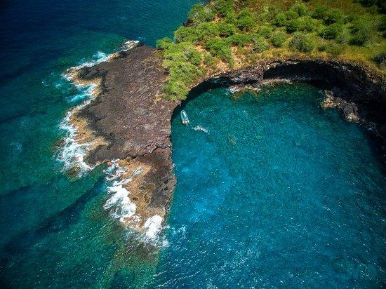 Hawaii Sea Quest Tours Big Island
