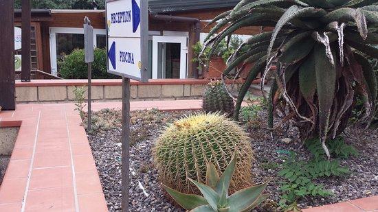 Agave hotel residence inn pozzuoli italien omd men i giardini di