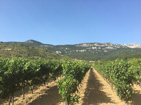 Hospederia del Vino: photo2.jpg
