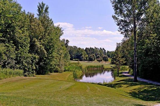 Kawartha Lakes, Canada: #9 Tee