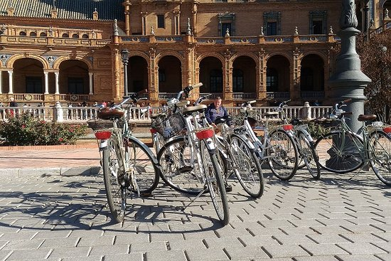 Discover Andalucia y Sevilla