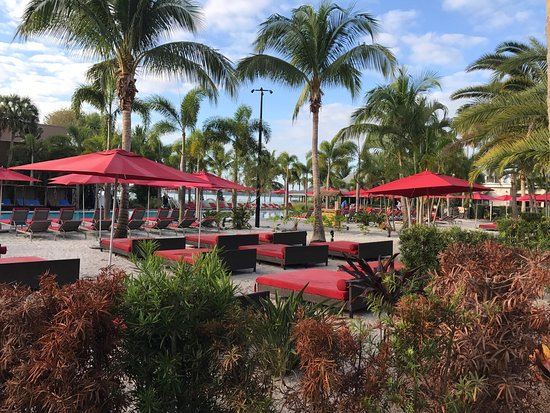 Port Saint Lucie, FL: Some views of Club Med.