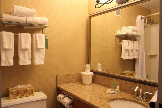 博茲曼假日酒店照片
