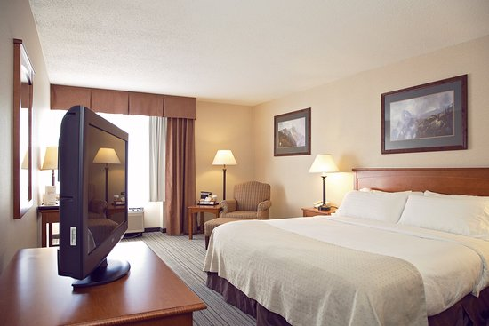 Holiday Inn Bozeman: One King bed with Desk and Lounge Chair