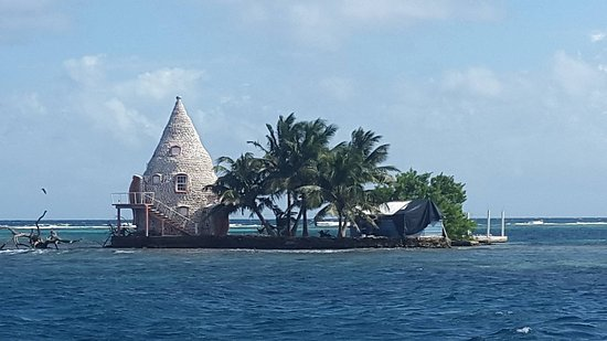 House Made From Conch Shells Picture Of Blue Reef Adventures Ltd - Conch-shell-house