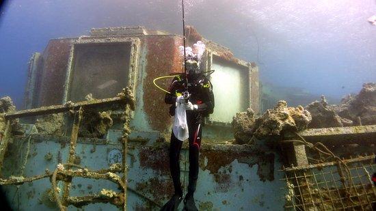 Custo Diving
