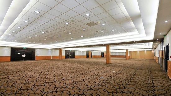 Holiday Inn Irapuato: Ballroom