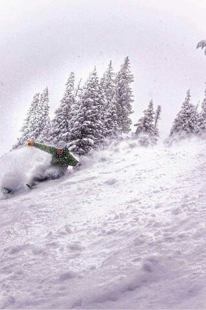 Victor, ID: Skiing Grand Targhee Ski Resort Powder