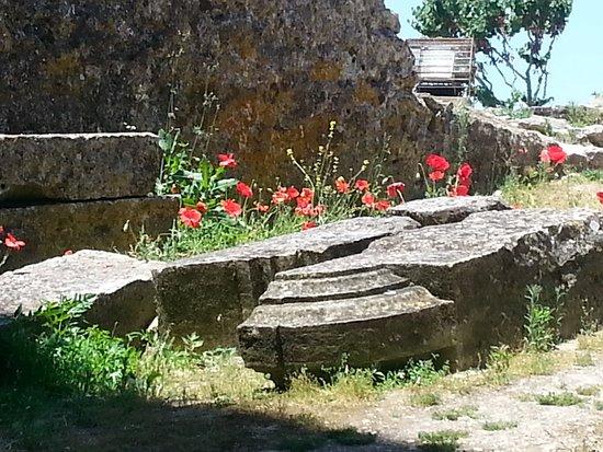 Ourem, Portugal: Ruinas do Castelo de Ourém