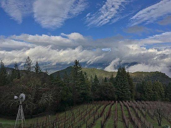 Napa Valley, Καλιφόρνια: Clearing skies