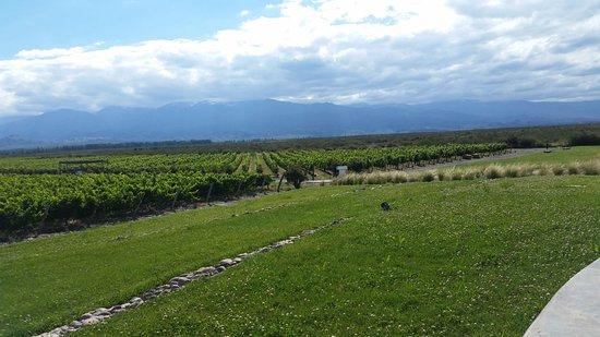 Tunuyan, Αργεντινή: Vista Bodega Salentein