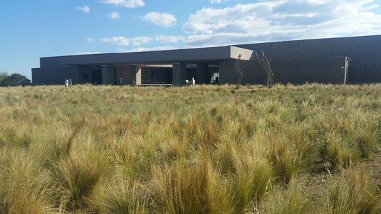 Tunuyan, Argentina: Vista Bodega Salentein