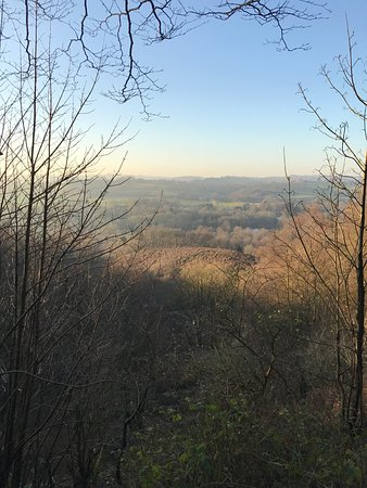 Wolverley, UK: Kingsford Forest Park at Winter